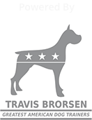 powered by Travis Brorsen icon