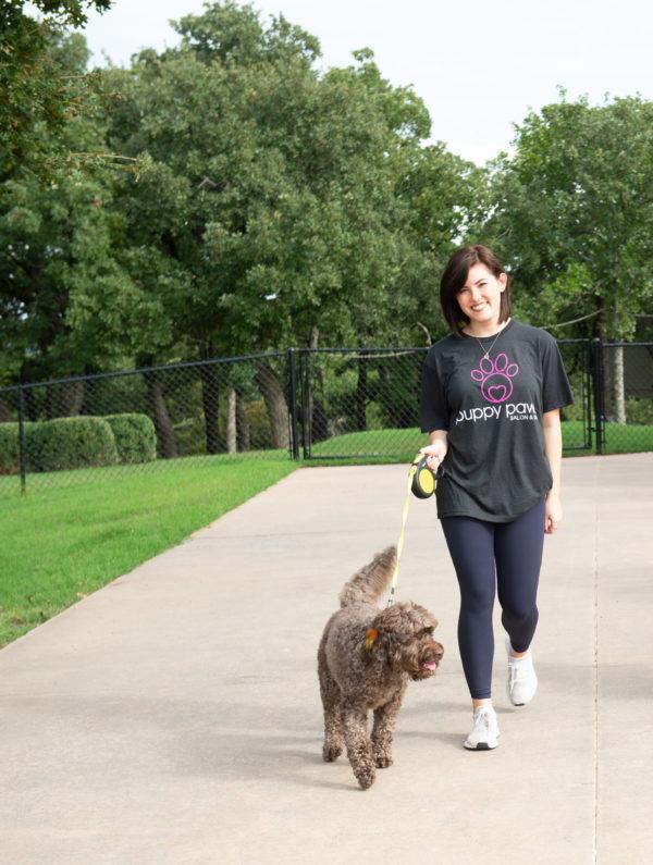 Paw Chauffeur dog walking